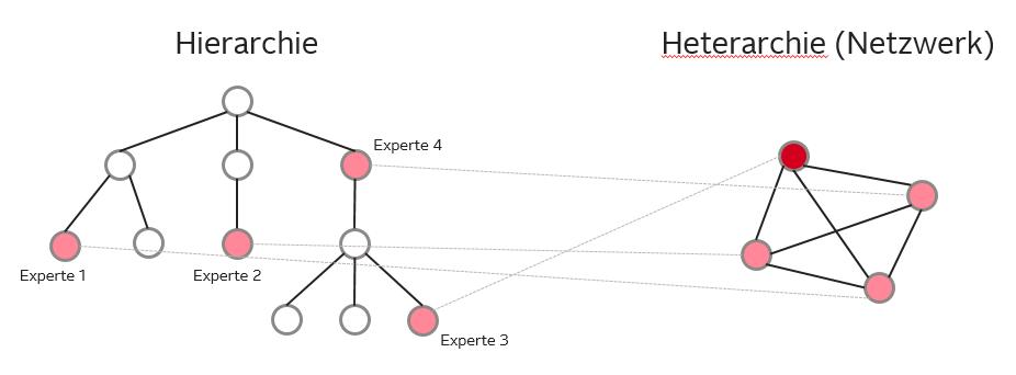 Hierarchie und Netzwerk